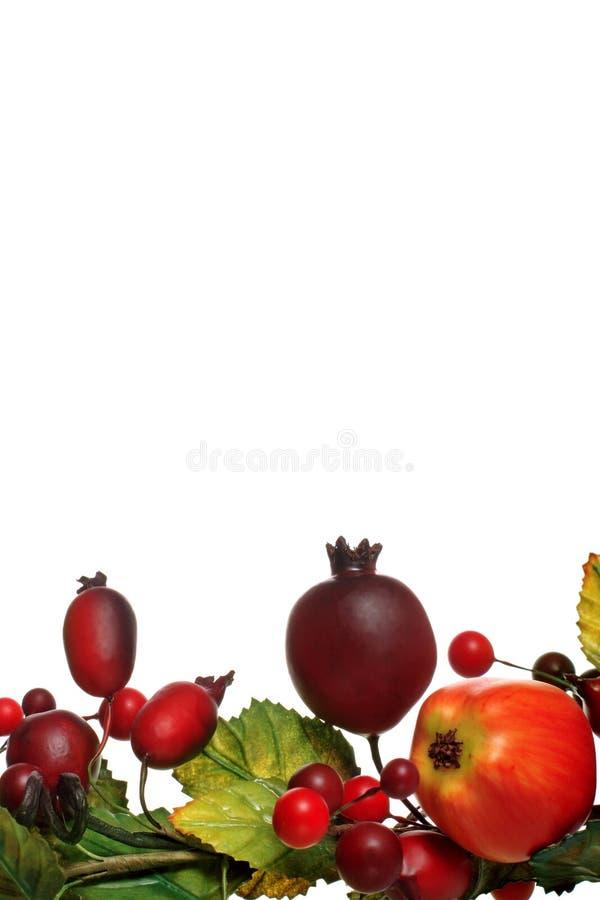 zima owoców obraz stock
