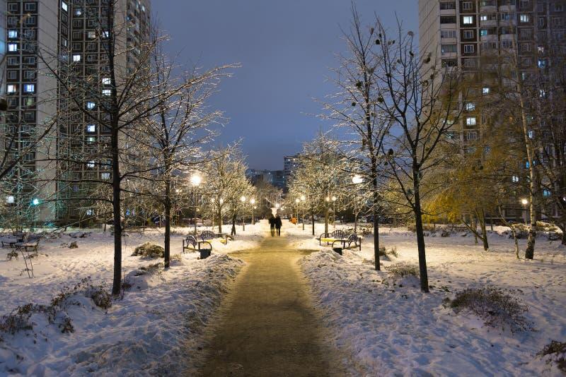 Zima park przy nocą w Moskwa, Rosja obrazy stock