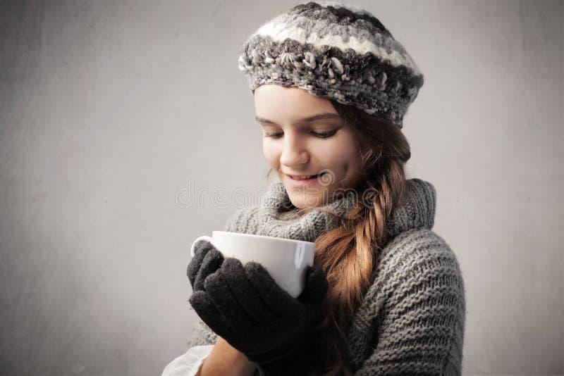 Zima przyjemności zdjęcie stock