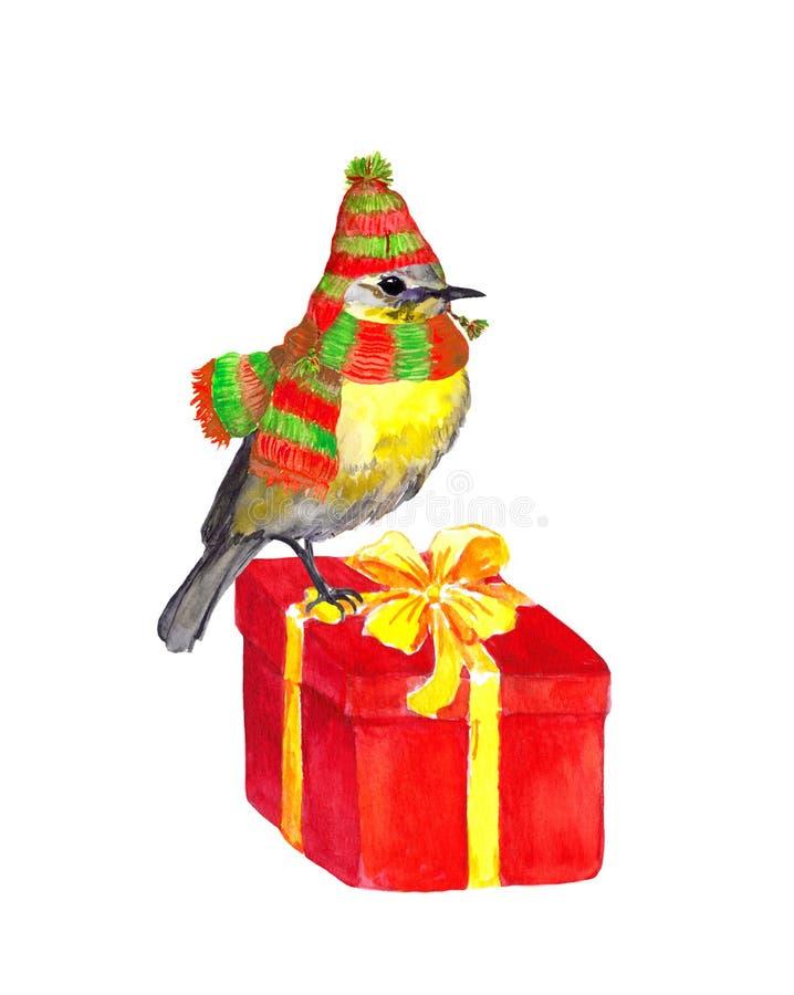 Zima ptak na nowy rok teraźniejszości - kapelusz, szalik - akwarela ilustracji