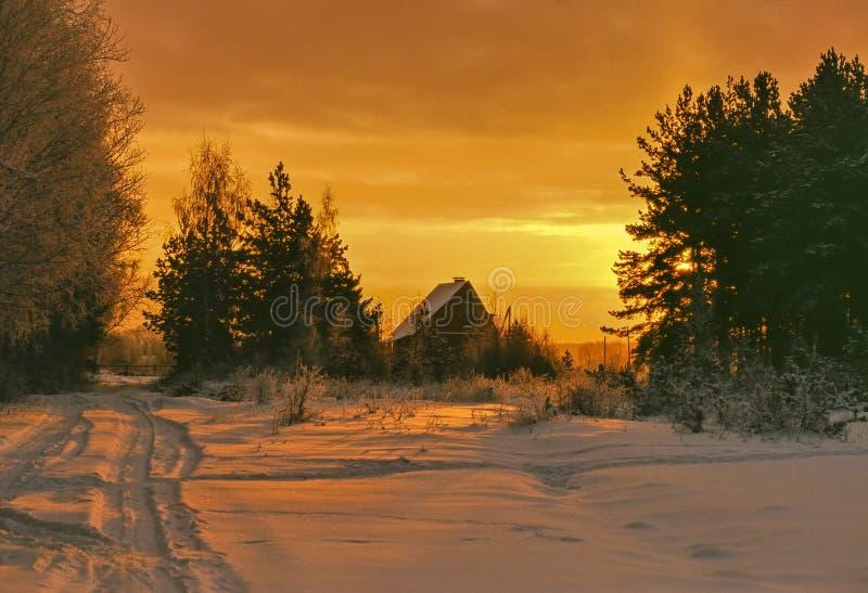 Zima ranek obraz stock