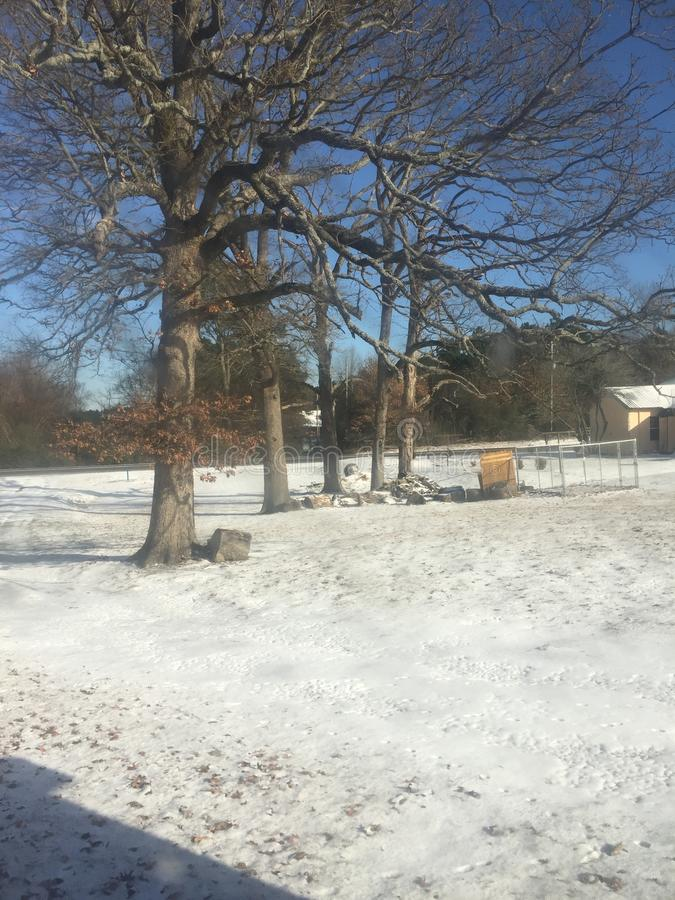 Zima ranek po śniegu obrazy royalty free
