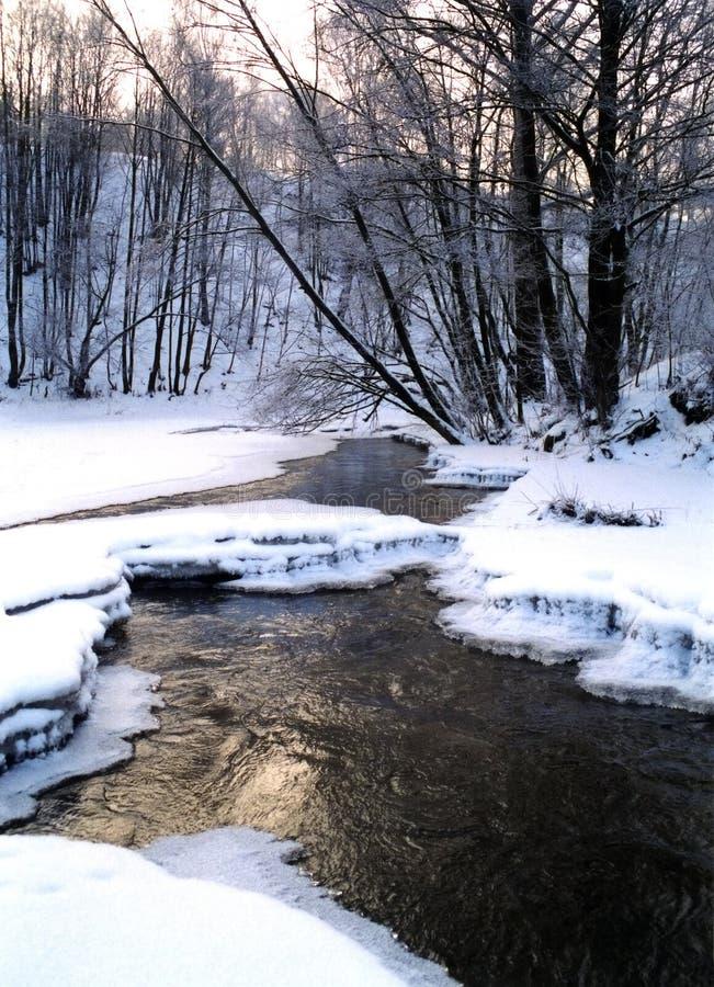 zima scenerii fotografia royalty free