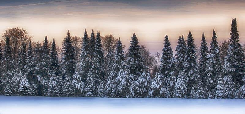 Zima sceniczny krajobraz obraz stock
