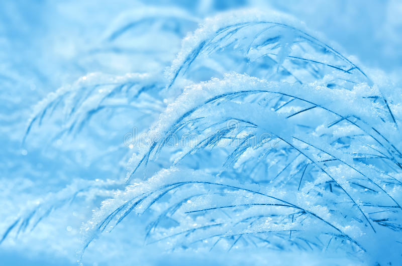 Zima sen. fotografia stock