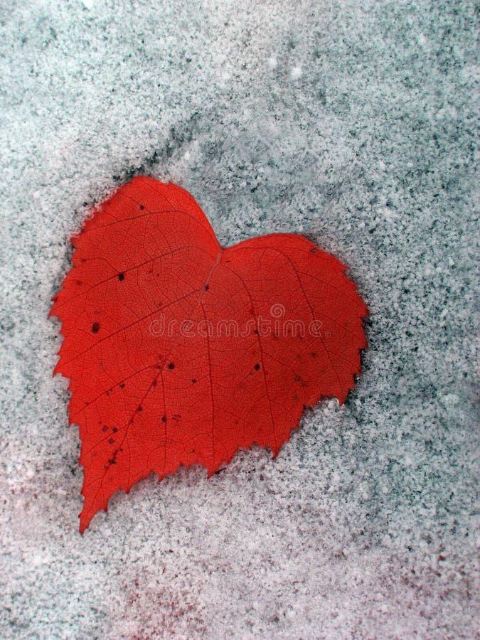 zima serca obrazy stock