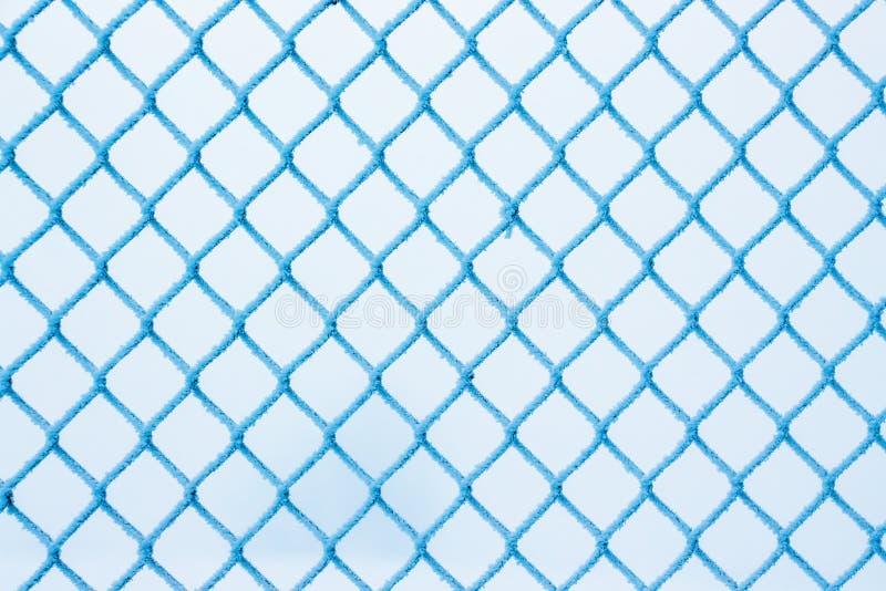 Zima, siatka ogrodzenie, zakrywająca z hoarfrost, mroźna zima royalty ilustracja