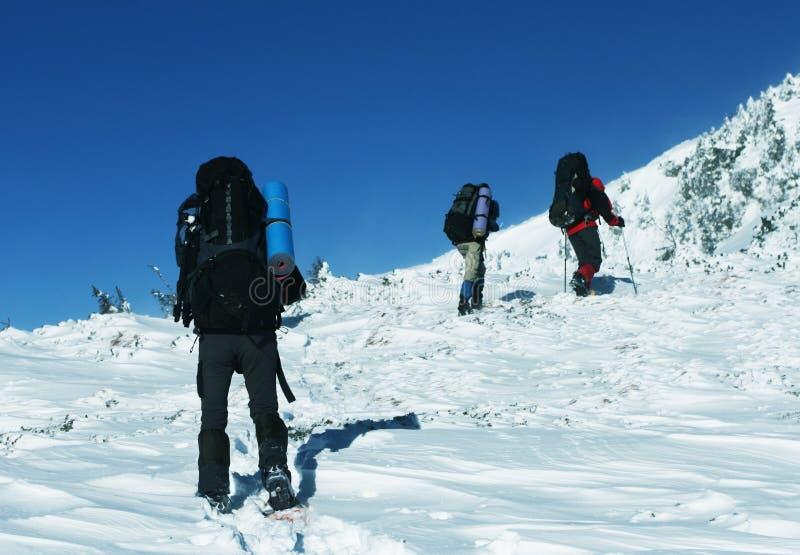 Zima sport zdjęcie royalty free