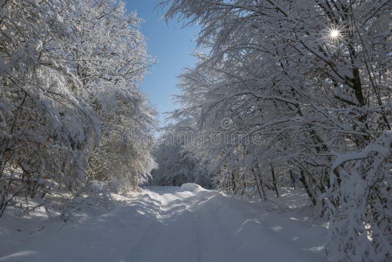 Zima tunel obrazy stock