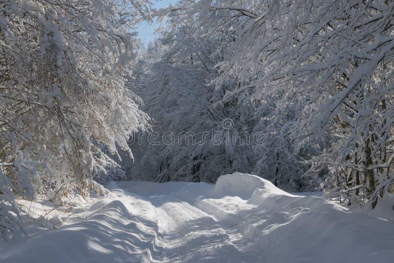 Zima tunel obraz stock
