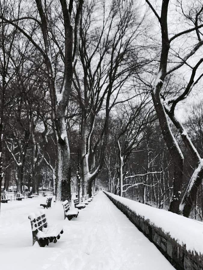 Zima w brzeg rzeki parku w Manhattan Morningside po śnieżnej burzy zdjęcie royalty free
