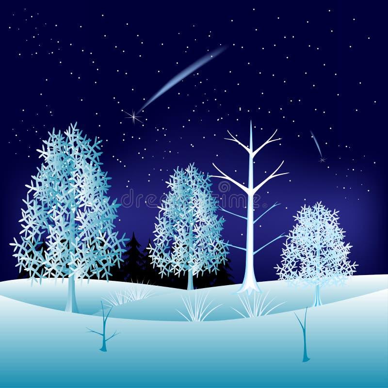Download Zima w drewnie ilustracja wektor. Ilustracja złożonej z miejsce - 28968197