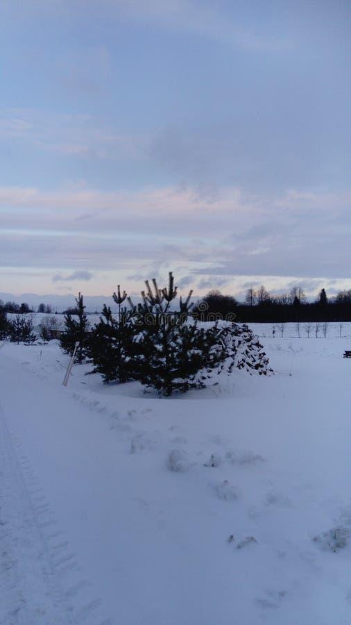 Zima w Lithuania zdjęcia stock
