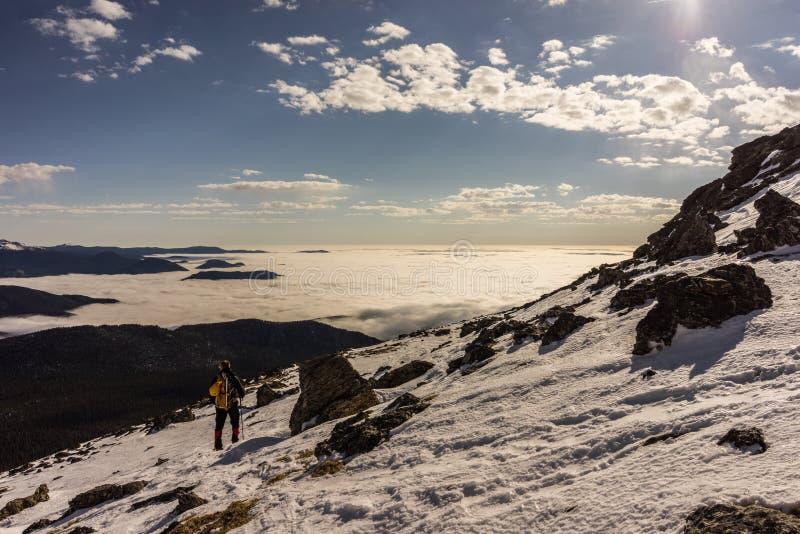 Zima w Skalistej góry parku narodowym, Kolorado obrazy stock