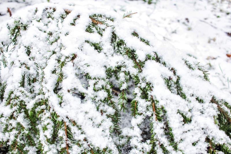 Zima w wiosce obraz stock