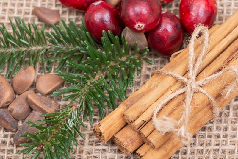 Zima wakacje dekoracja: fraser jodły gałązka, cynamonowi kije, cranberries i sosnowe dokrętki w skorupie na burlap, zdjęcie stock
