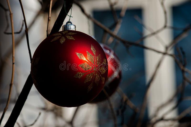 Zima wakacje dekoracji pojęcie: Nagi drzewo Bez liści dekorował z Bożenarodzeniowymi rocznik piłkami obrazy stock