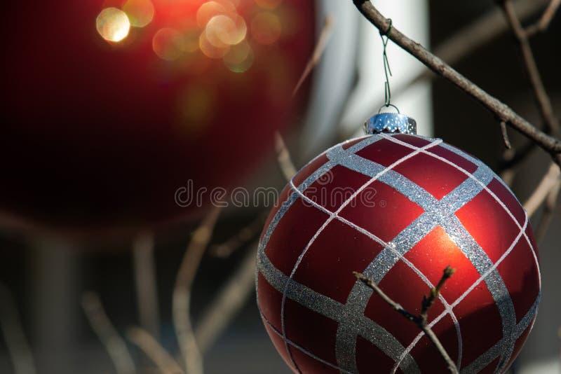 Zima wakacje dekoracji pojęcie: Nagi drzewo Bez liści dekorował z Bożenarodzeniowymi rocznik piłkami fotografia stock