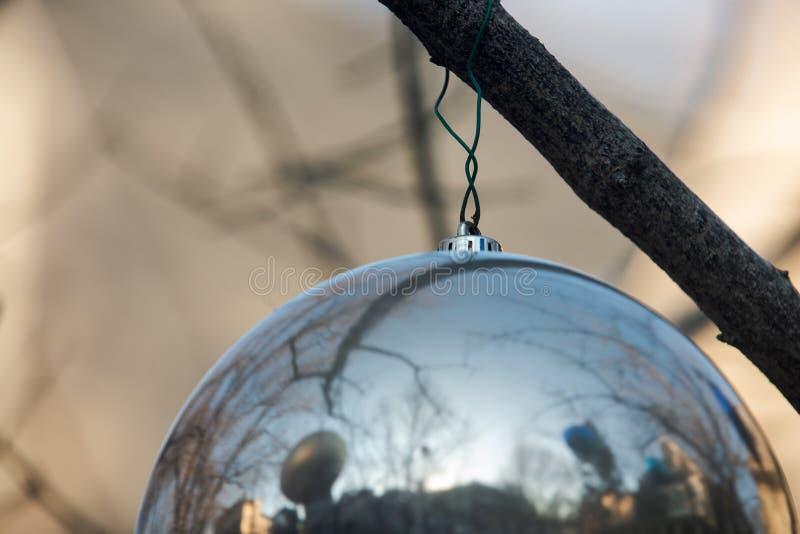 Zima wakacje dekoracji pojęcie: Nagi drzewo Bez liści dekorował z Bożenarodzeniowymi rocznik piłkami obrazy royalty free