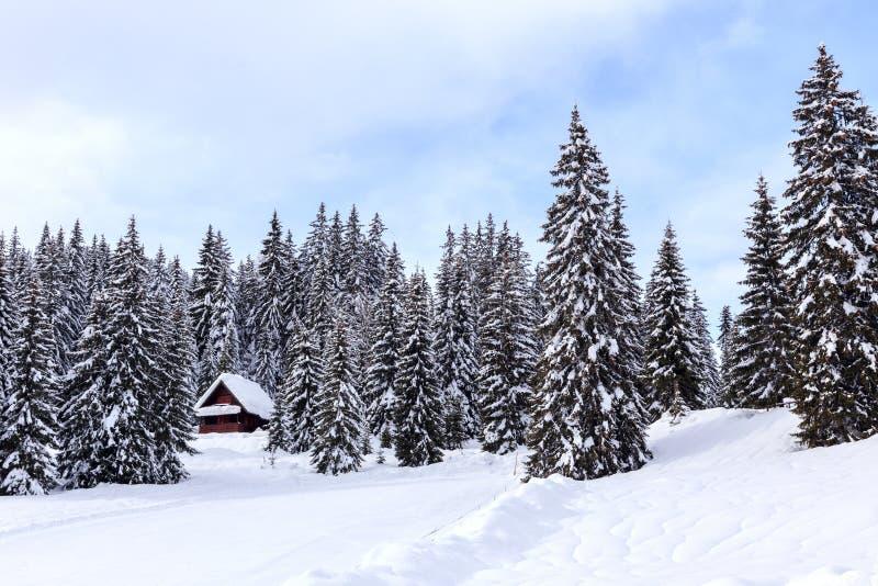 Download Zima wakacje dom obraz stock. Obraz złożonej z siedziba - 53789439