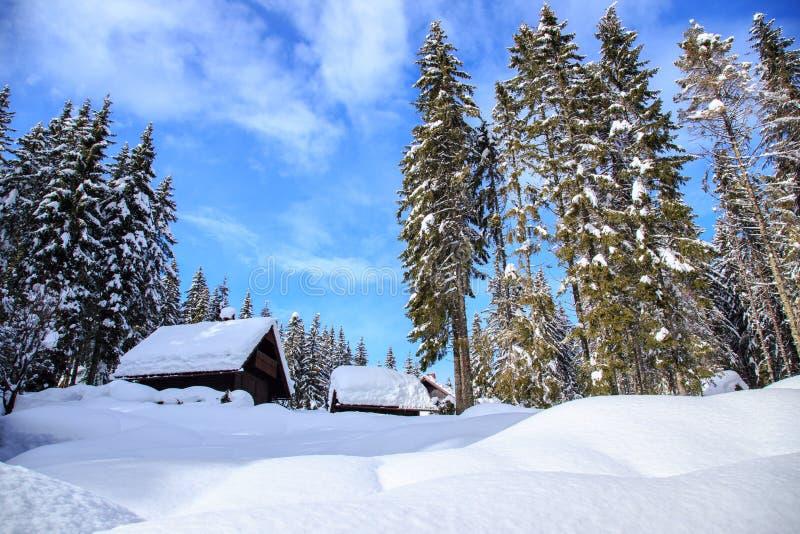 Download Zima wakacje dom obraz stock. Obraz złożonej z odpoczynek - 53789735