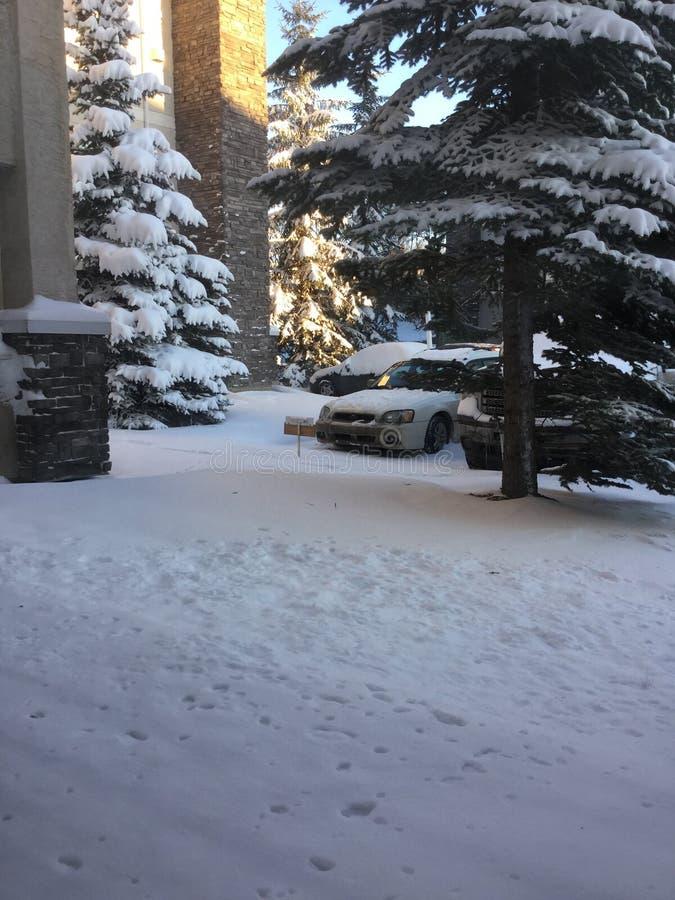 Zima wczesny Śnieg obrazy royalty free