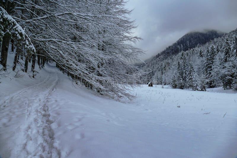 Zima widok górski z ścieżką i budynkiem obraz stock