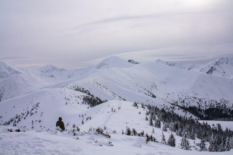 Zima widok góry zdjęcia royalty free