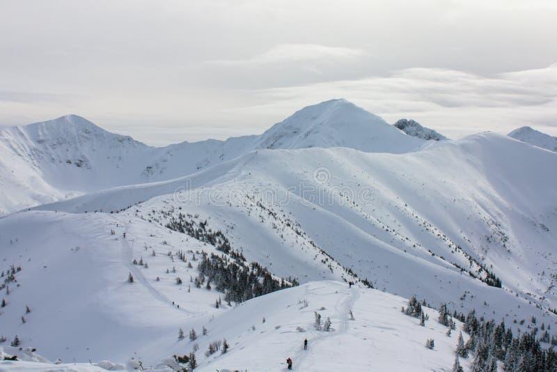 Zima widok góry obraz royalty free