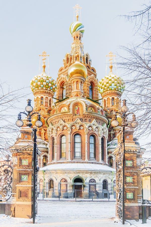Zima widok kościół wybawiciel na krwi w St Petersburg fotografia royalty free