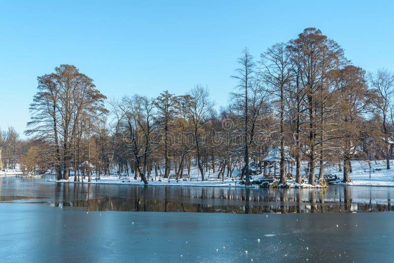 Zima widok od Nicolae Romanescu parka, zdjęcie royalty free