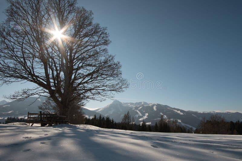 Zima widok w Austria obrazy royalty free