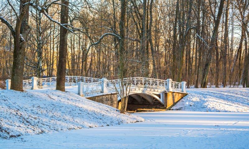 Zima wieczór park fotografia royalty free