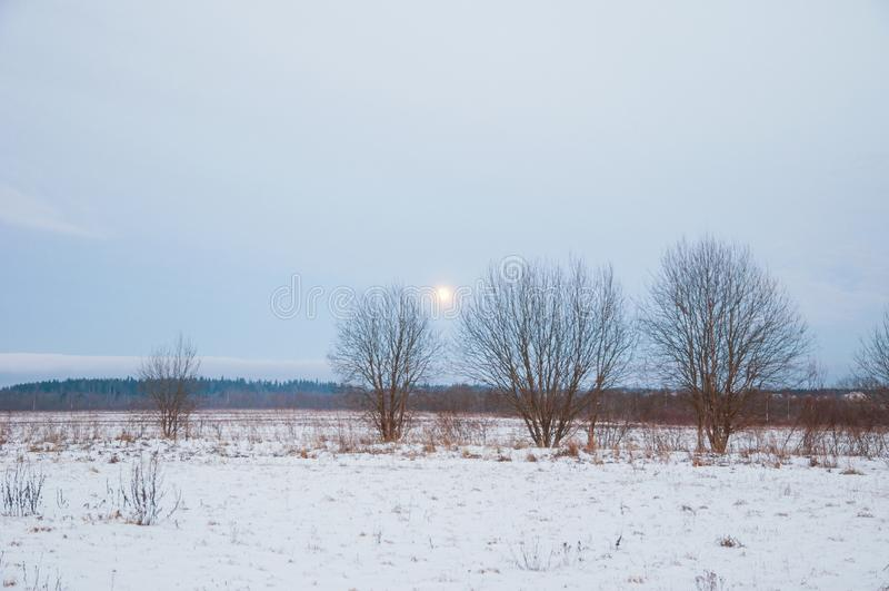 Zima wieczór w śnieżnych polach Rosyjska prowincja zdjęcia royalty free