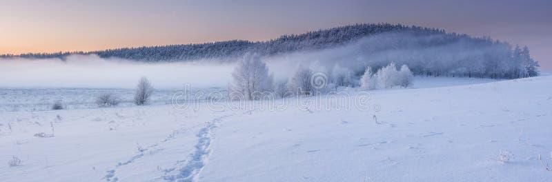Zima wschód słońca obrazy stock