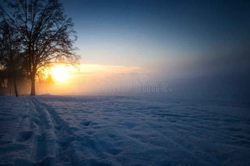 Zima wschód słońca nad jeziornym brzeg fotografia stock