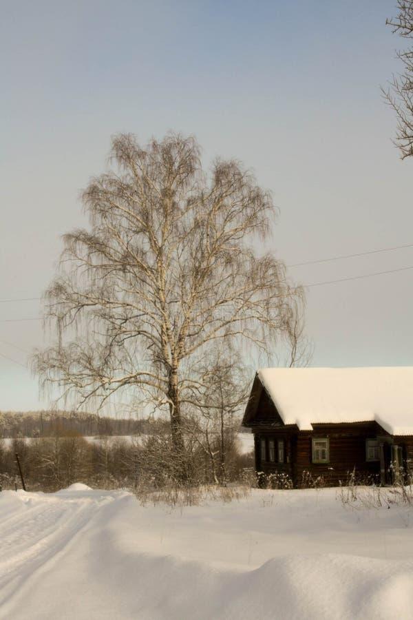 Zima z udziałami śnieg w Rosyjskiej wsi zdjęcie stock