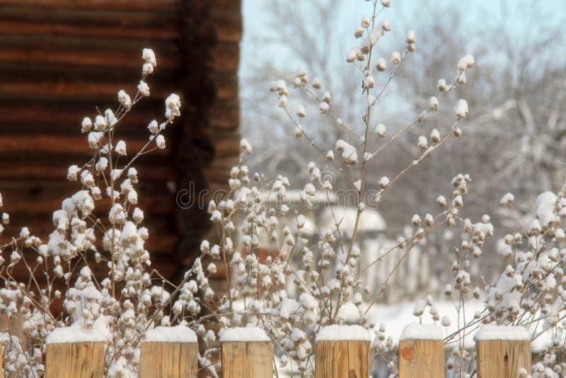Zima z udziałami śnieg w Rosyjskiej wsi obrazy stock