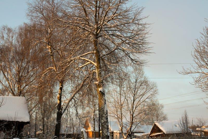 Zima z udziałami śnieg w Rosyjskiej wsi obraz royalty free