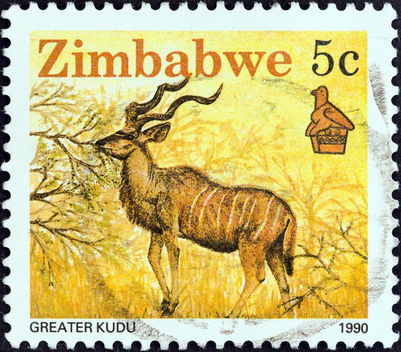 ZIMBABWE - CIRCA 1990: Een zegel in Zimbabwe wordt gedrukt toont Grotere kudu, circa 1990 die stock foto