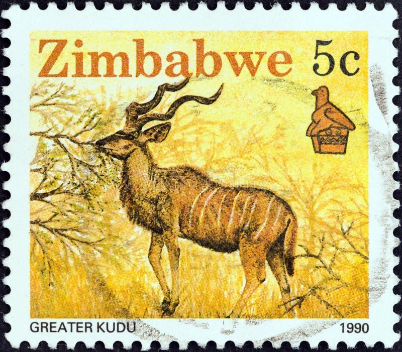 ZIMBABWE - CIRCA 1990: A stamp printed in Zimbabwe shows Greater kudu, circa 1990. ZIMBABWE - CIRCA 1990: A stamp printed in Zimbabwe from the `Wildlife` issue stock photo
