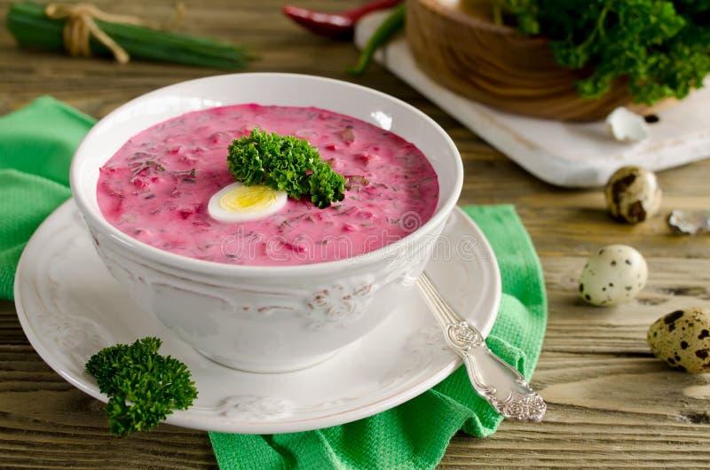 Zimna ćwikłowa polewka z jajkiem, ogórkiem, grulami i zieleniami, zdjęcia stock