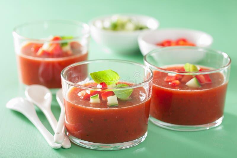 Zimna gazpacho polewka w szkle zdjęcia royalty free