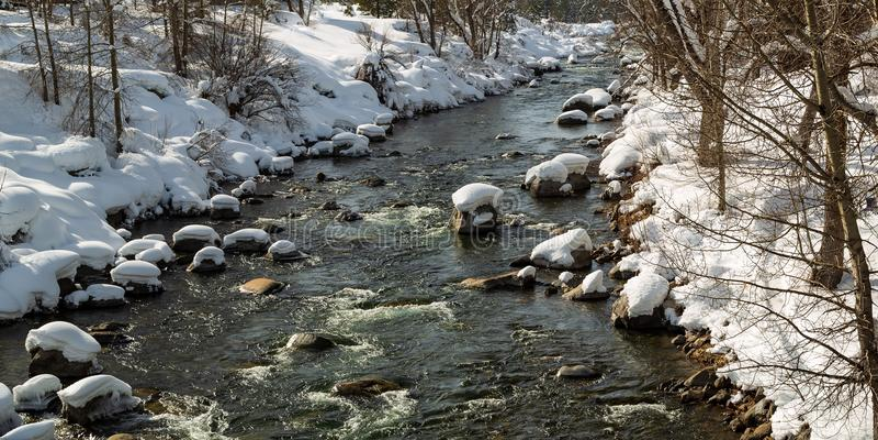 Zimna woda anyone Truckee rzeczny spływanie w zimie fotografia stock
