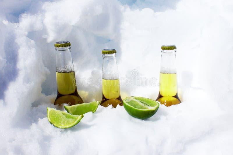 Zimni piwa obraz stock
