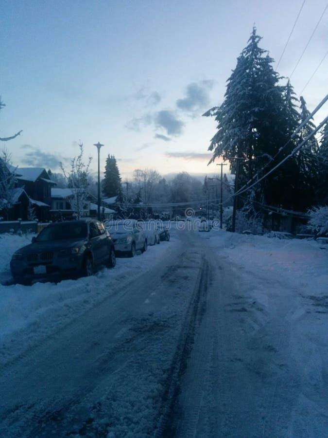 Zimny śnieżny dzień w Vancouver zdjęcie royalty free