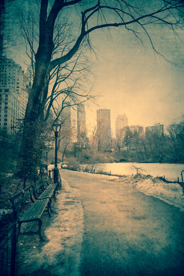 Zimny central park fotografia royalty free