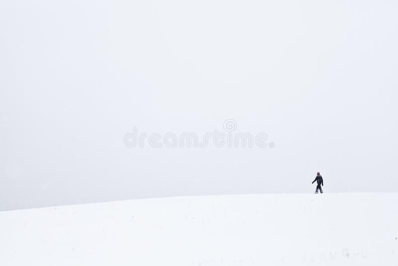 Zimny i osamotniony spacer zdjęcie stock