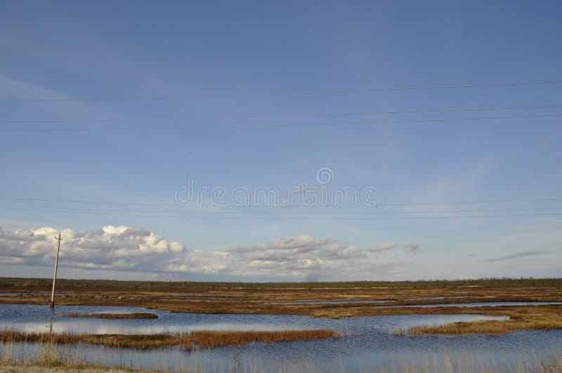 Zimny jesieni niebo nad rzekami i jeziorami _ tundra zdjęcia royalty free