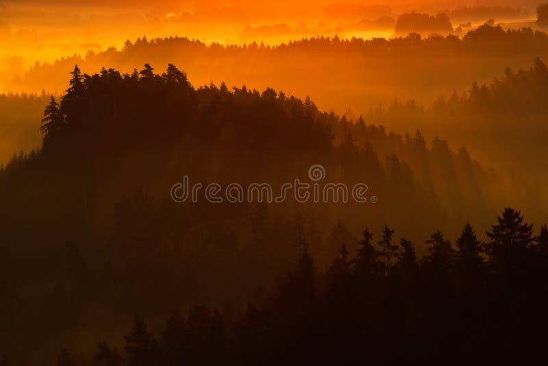 Zimny mglisty mgłowy ranek w spadek dolinie czecha Szwajcaria park Wzgórza z mgłą, krajobraz republika czech, słońce promień w t fotografia stock